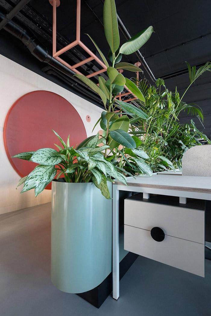 传媒办公室绿植装修设计方案